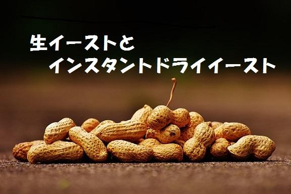 生イーストタイトル