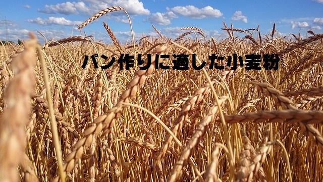 小麦粉の違いアイチャッチ